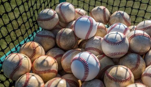 ポルテ野球教室の特徴と費用を解説!口コミ評判もあわせて紹介
